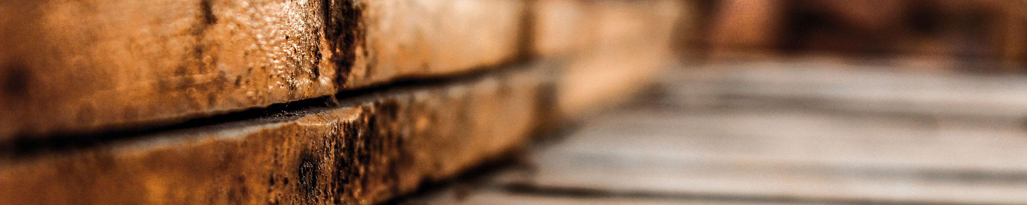 charleston woodworking school | short courses