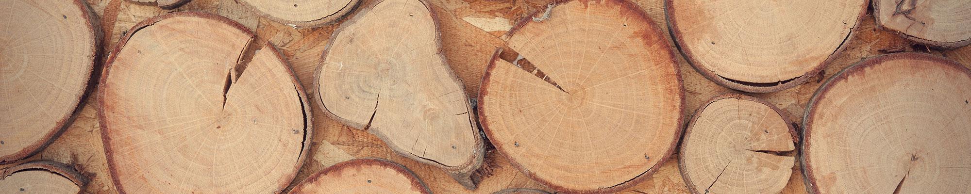 Charleston Woodworking School Education